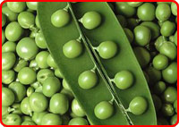 small_whole_green_peas