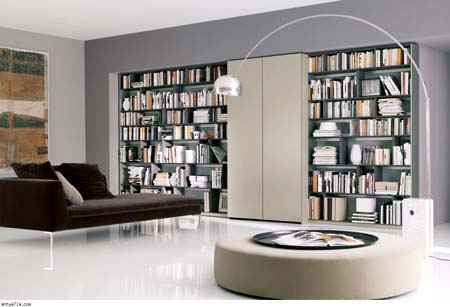 Keep your books on libraries elegant home (10)