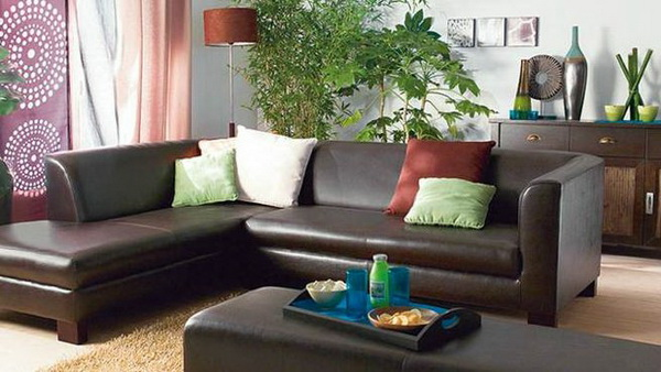 Elegant-Leather-Sofas-for-All-Styles_10