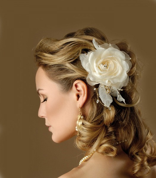 Evening Hairstyles (8)