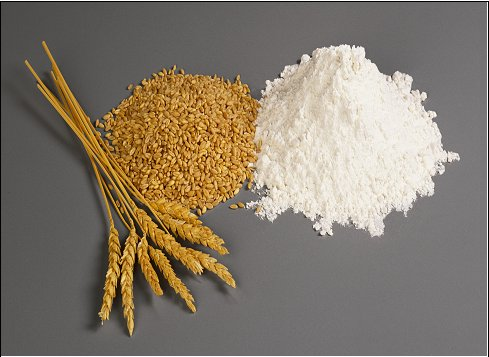 Wheat_Flour_High_Gluten_Wheat_Flour_Pollard