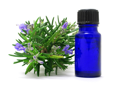 rosemary herb & oil