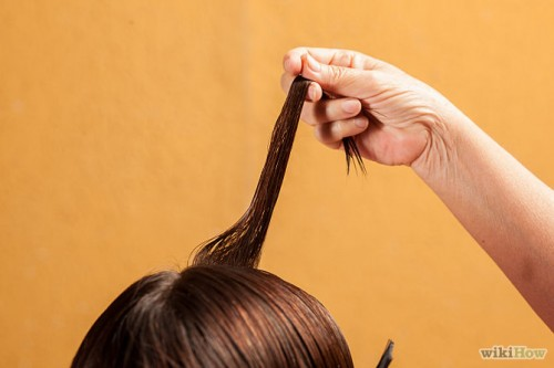 670px-Apply-Henna-to-Hair-Step-2