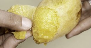 670px-Use-Ripe-Mangoes-for-a-Refreshing-Face-Pack-Step-2