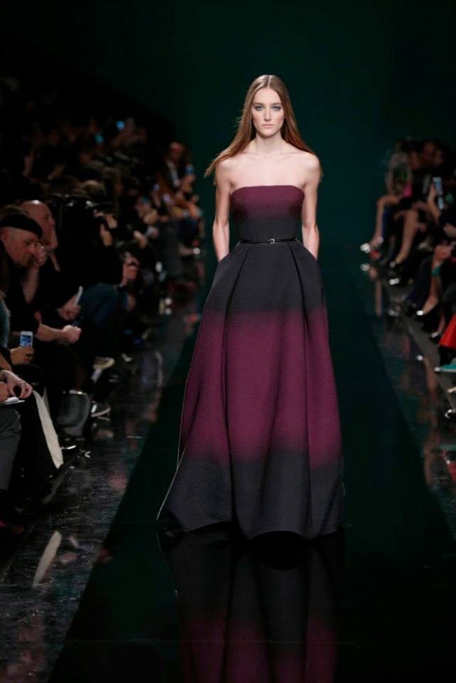 ELIE SAAB Ready-to-Wear Autumn Winter 2014-2015 Fashion Show (18)