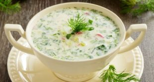 Russian traditional soup cool