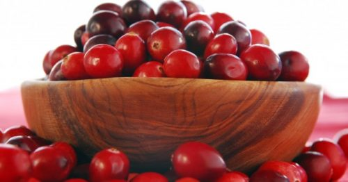 cranberry_thanksgiving_detox_health_urinary infection_2